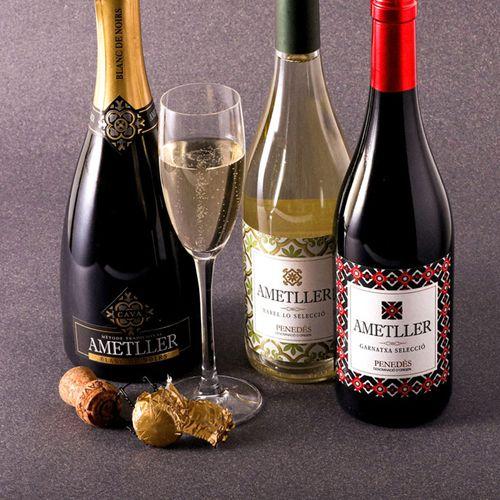 Lot 3 vins Ametller premiats