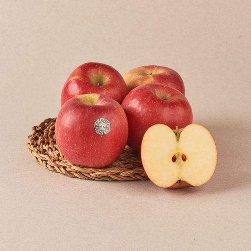 Manzana gala extra