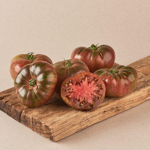 tomate abigarrado